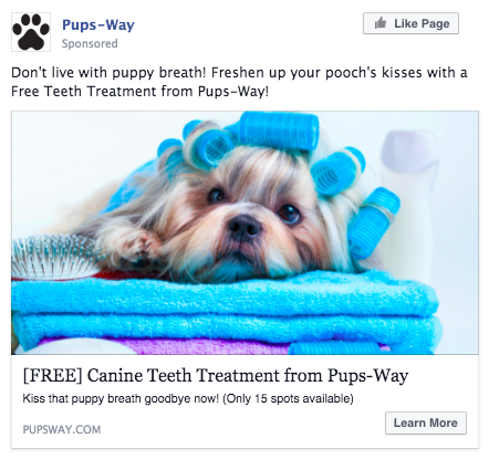 How to Use Facebook Ads to Sniff Out Pet Grooming Leads
